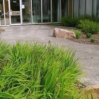Commercial Landscaping Project at 124 Street business including patio design