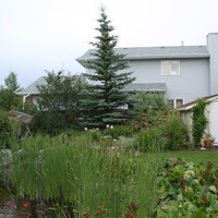 Mature lot garden design plan including beautiful flower garden ideas and water features.